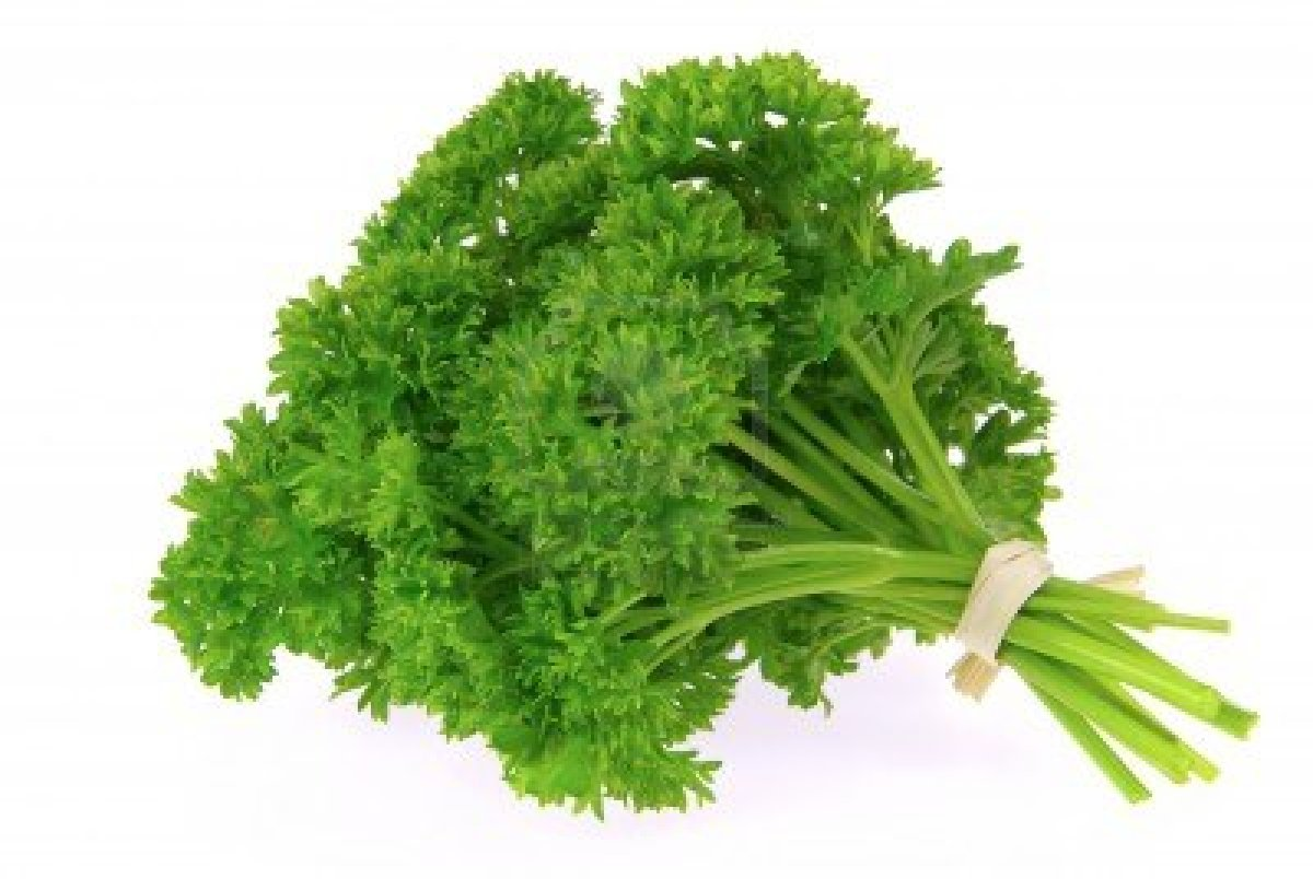 6114034 parsley 21